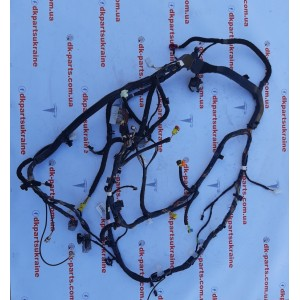 1 Электропроводка инструментальной панели (PREMIUM) 1067960-00-D